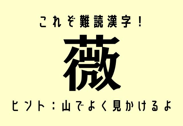 これぞ難読漢字!【薇】これ1文字で何と読む?ヒント:山でよく見かけるよ
