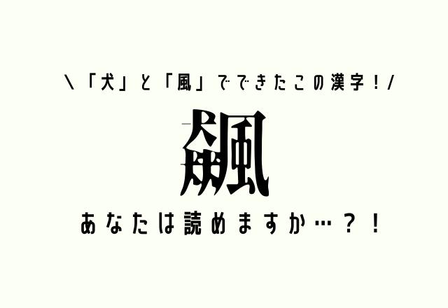 「犬」と「風」でできたこの漢字!【飆】あなたは読めますか…?!