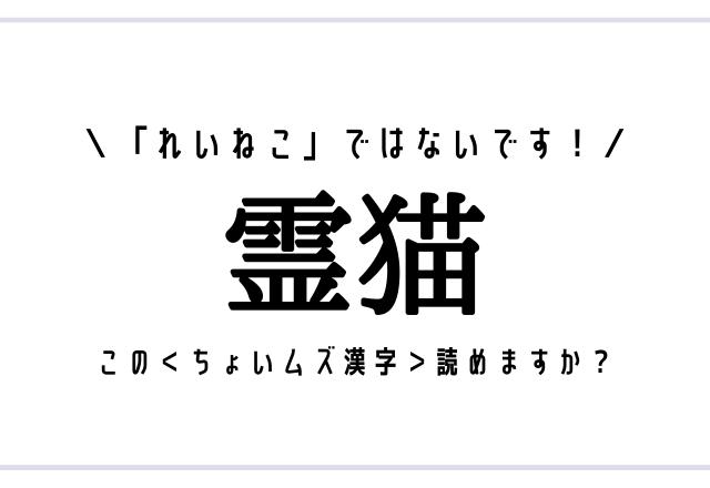 「れいねこ」ではないです!【霊猫】この<ちょいムズ漢字>読めますか?